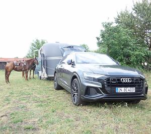 Pferdeanhaenger_Zugfahrtest_Audi_Q_8_w__24_von_54_