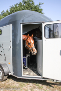 Pferdeanhaenger-Cheval-Liberte-Gold3p-3-von-4-200x300