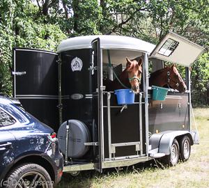 Pferdeanhaengertest-Fautras-Oblic-2-28-von-29