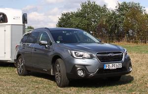 Subaru Kombi Pferdeanhänger