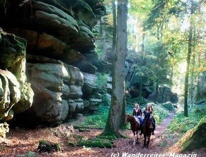 Wanderreiter-Tipp südliche Eifel