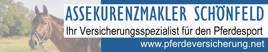 Schönfeld_2020