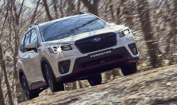 Subaru_Forester_Edition_Sport_bergauf
