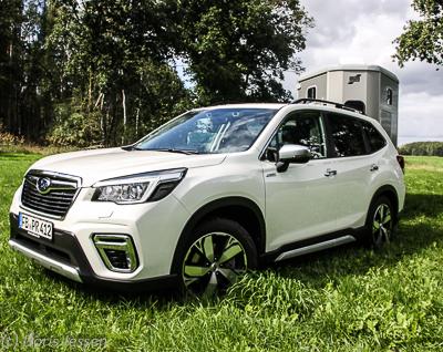 Subaru-Forester-w-21