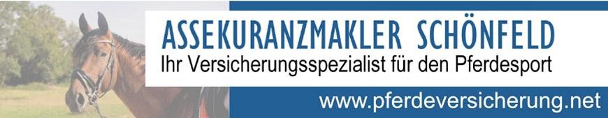 Schoenfeld_2020_neu