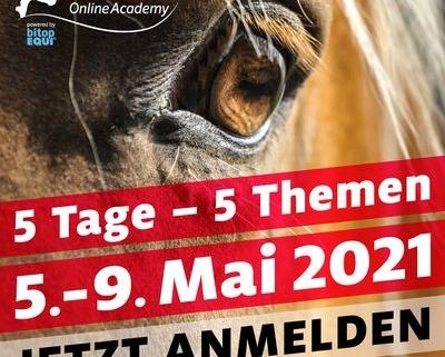 Cavaloo-Academy-Anmelden-400x321